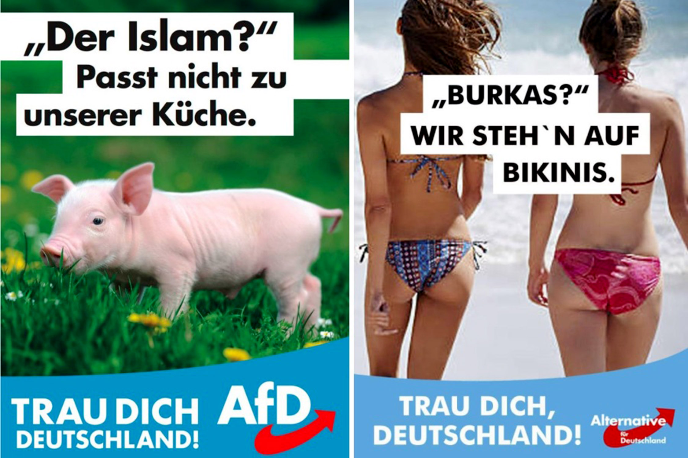 Afd Der Islam Passt Nicht In Unsere Küche 2017 In Review Politics Never A Dull Moment The Sunday Times