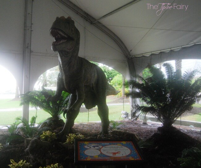 Looking for a great vacation idea? Check out @MoodyGardens! Come see our review! @usfg #ad | The TipToe Fairy
