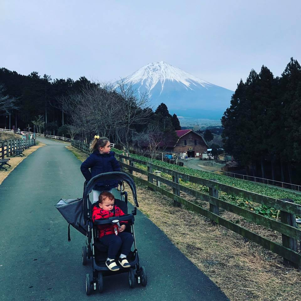Carriage Type Strollers Pack A Stroller Not Just For Babies The Tokyo Chapter