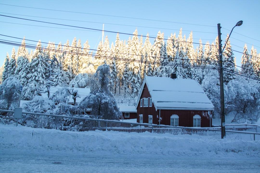 Oslo in the winter - Winter Park