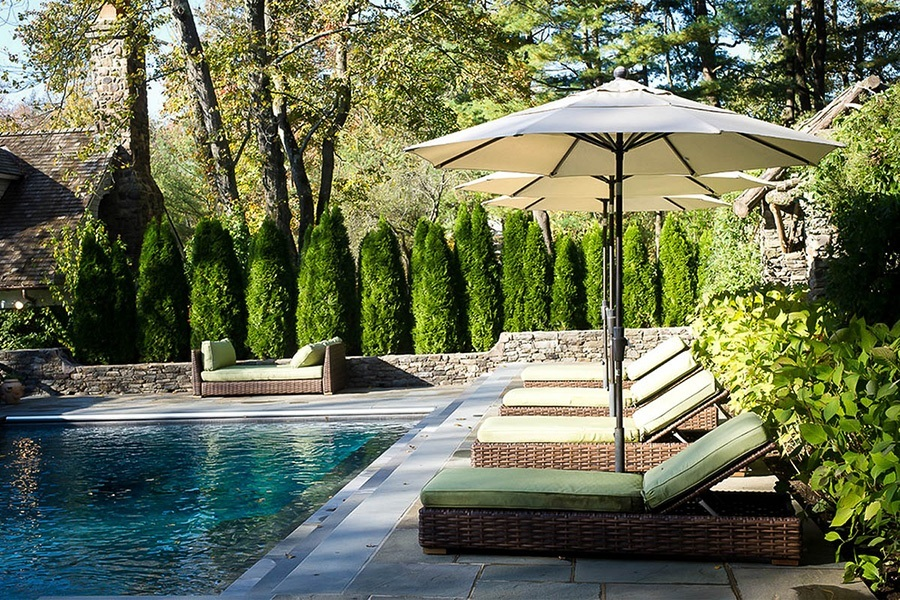 Pool Garten Pinterest Emerald Green Arborvitae | Buy Emerald Thuja Online | The