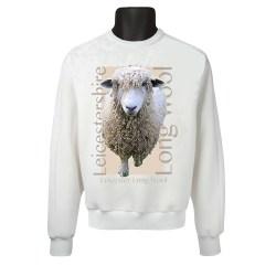 Long wool SS