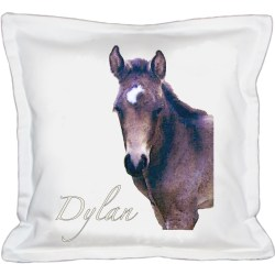 Dylan Cushion