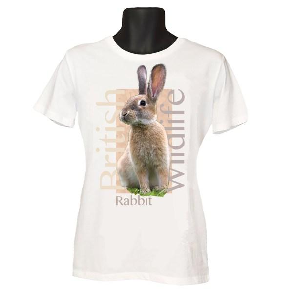 Rabbit T