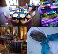 peacock wedding decorations | thetwentysomethingblog