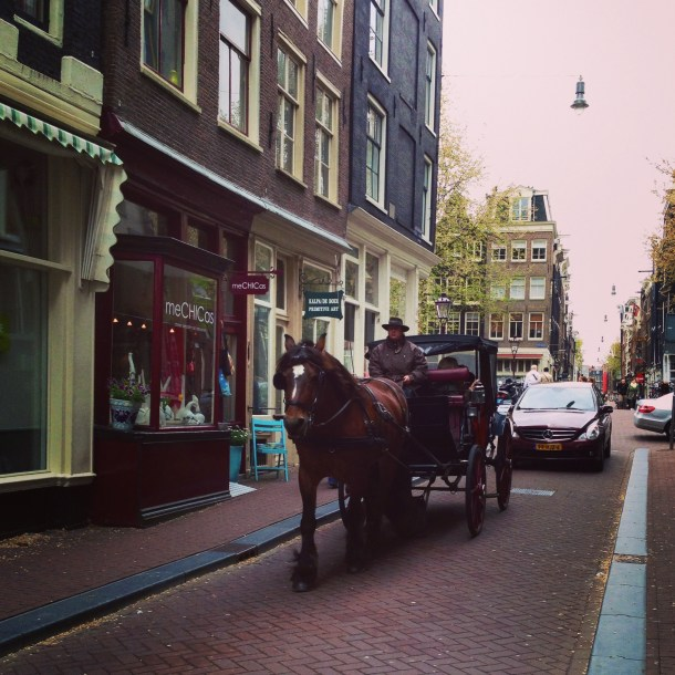 Horse and cart Amsterdam - Nicole Canning