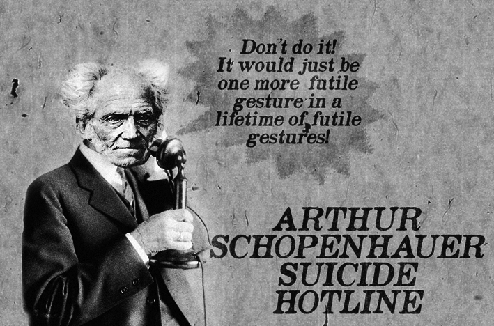 Willpower Quotes Wallpaper Schopenhauer Arthur The Valiens