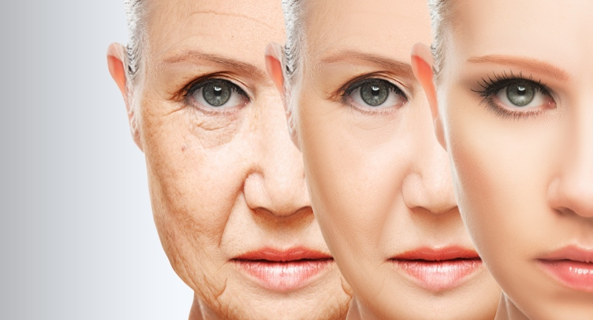 4 key factors to have a youthful skin the venus face