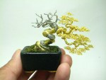 Top 10 Creative and Unusual Bonsai Trees