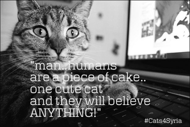 man humans are a piece of cake