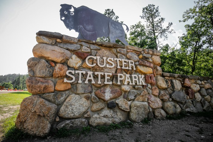 Custer State Park 01