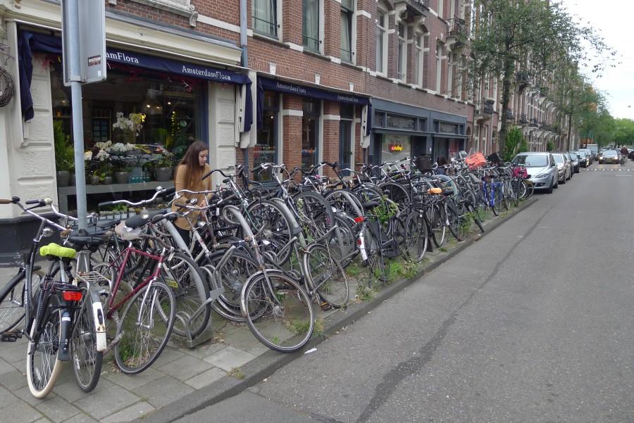 Cyklar dominerade i Amsterdam