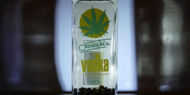 1/4 oz. of stockpiled cannabis stems from breaking up buds. Vodka (any kind should do) 1