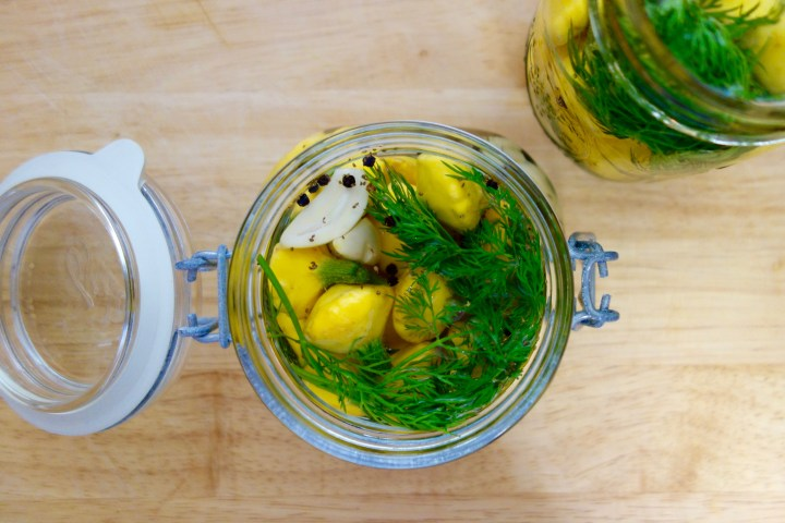pickled-pattypan-squash