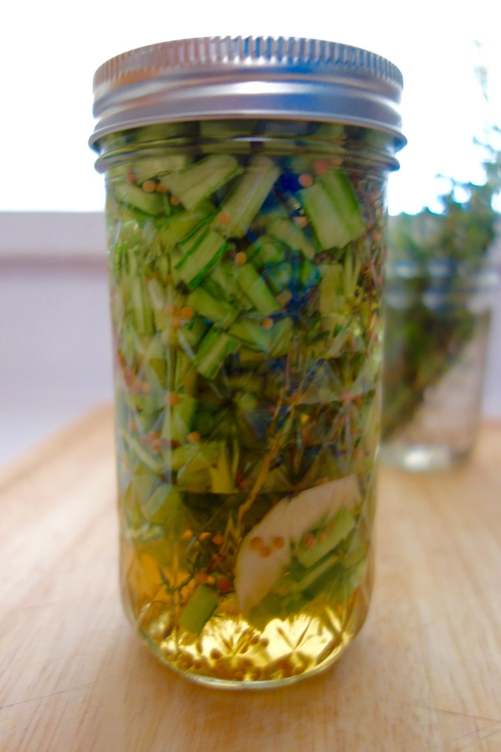 pickled-turnip-stems