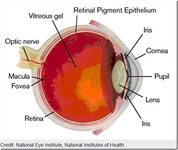 Eye Diagrams \u2013 The Will to See