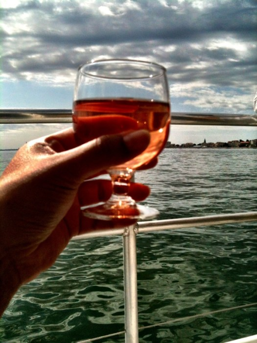 Bordeaux rose on the bay