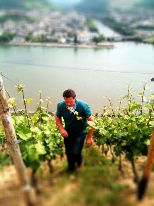 Johannes in the vines