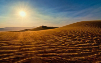 """Desert illustrating the definition of """"sere"""""""
