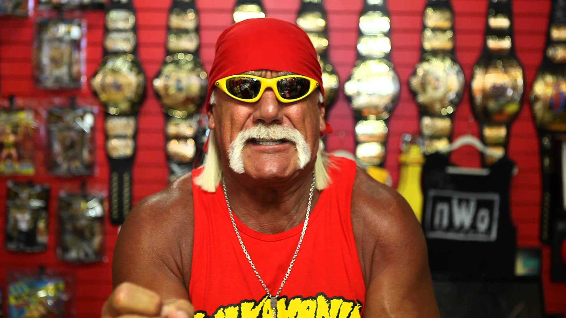 Wwe Hulk Hogan Wwe Terminates Contract With Hulk Hogan Over Racist Remarks
