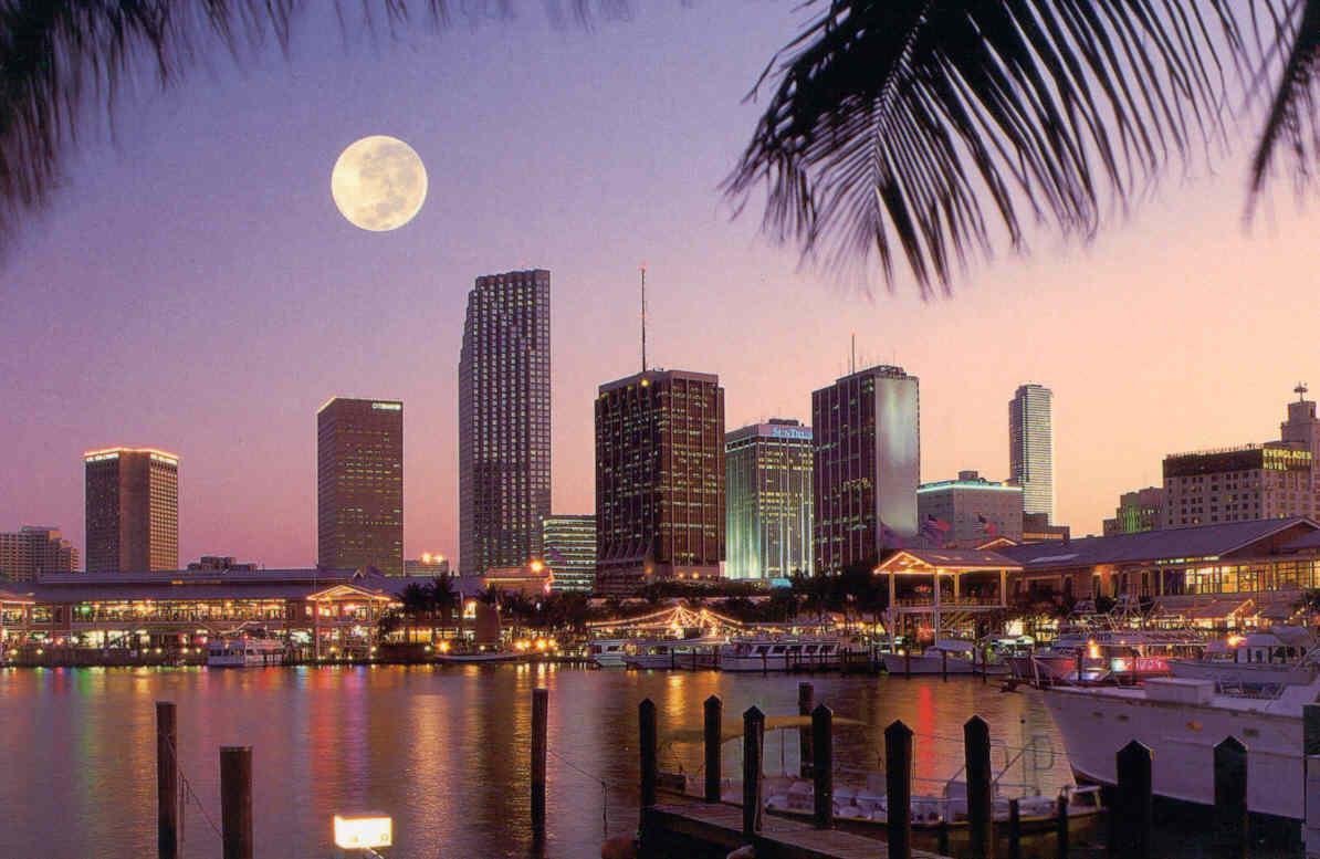 Varun Dhawan Hd Wallpaper Must Visit Miami Once In Lifetime