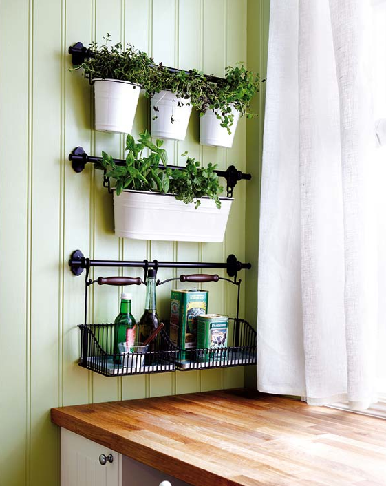Completely in love with this little indoor herb garden.