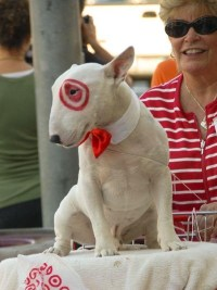 Halloween Target Dog Bull Terrier Costume