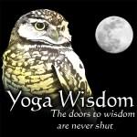 Yoga-Wis