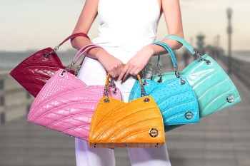 A Purse Every Woman Should Have