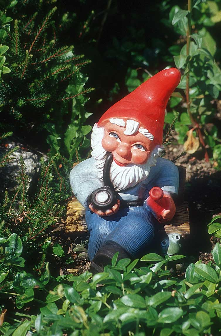 New Attitude Girl Wallpaper Lawn Gnomes Really Piss Me Off Things That Really Piss