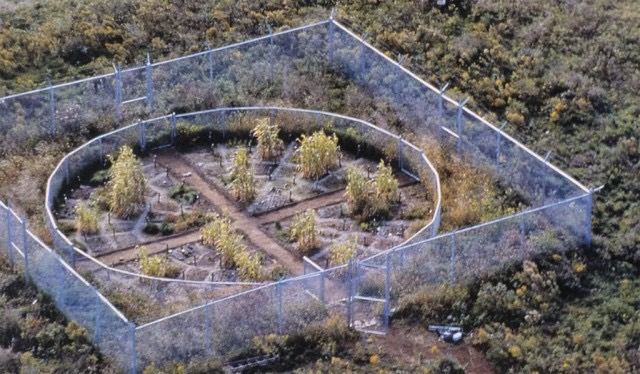 Mel Chin. Revival Field, 1991-present. Photo: The Schuylkill Center for Environmental Education.