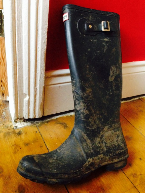 Hunter Wellies Original Tour