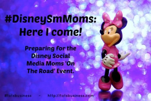 disney smmoms