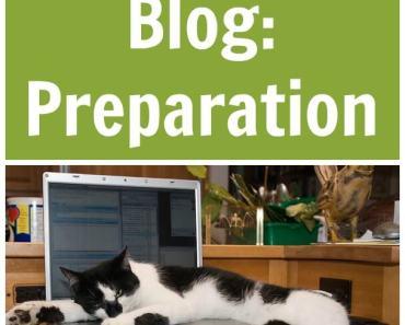 Birth of a Blog: Preparation