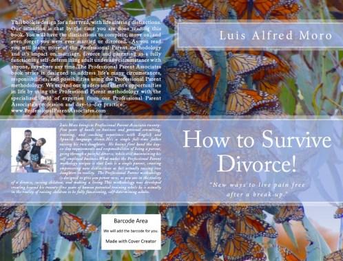 How to Survive Divorce!