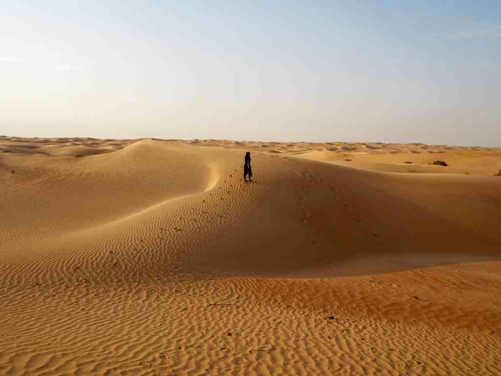PLATINUM HERITAGE DESERT SAFARI DUBAI – EVERYTHING YOU NEED TO KNOW!