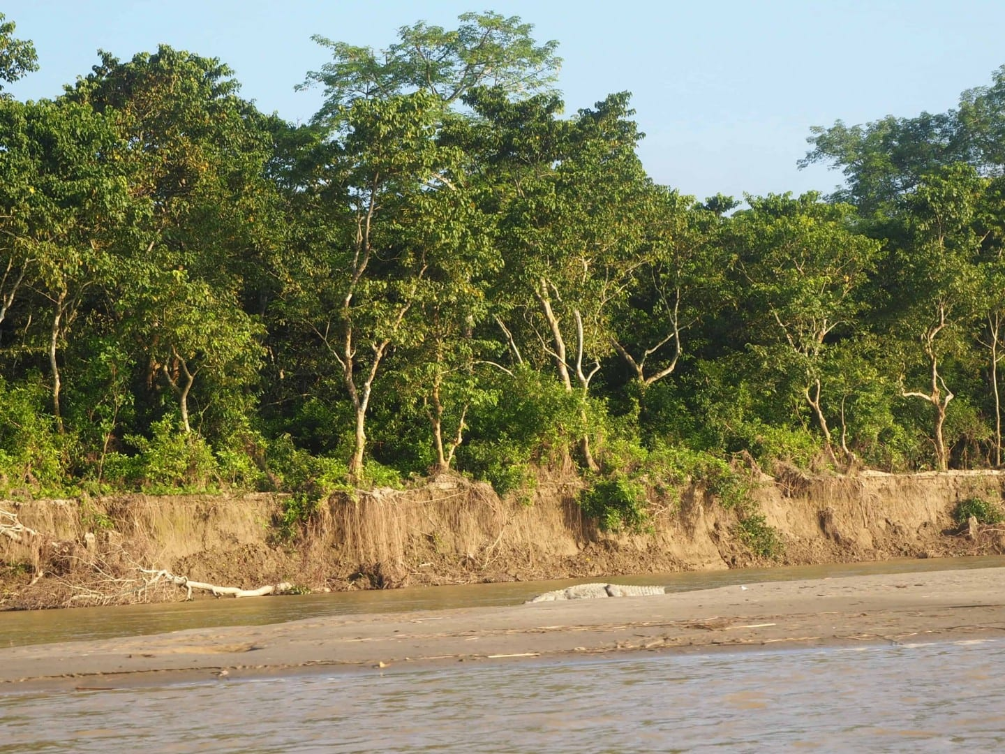 travel guide chitwan national park
