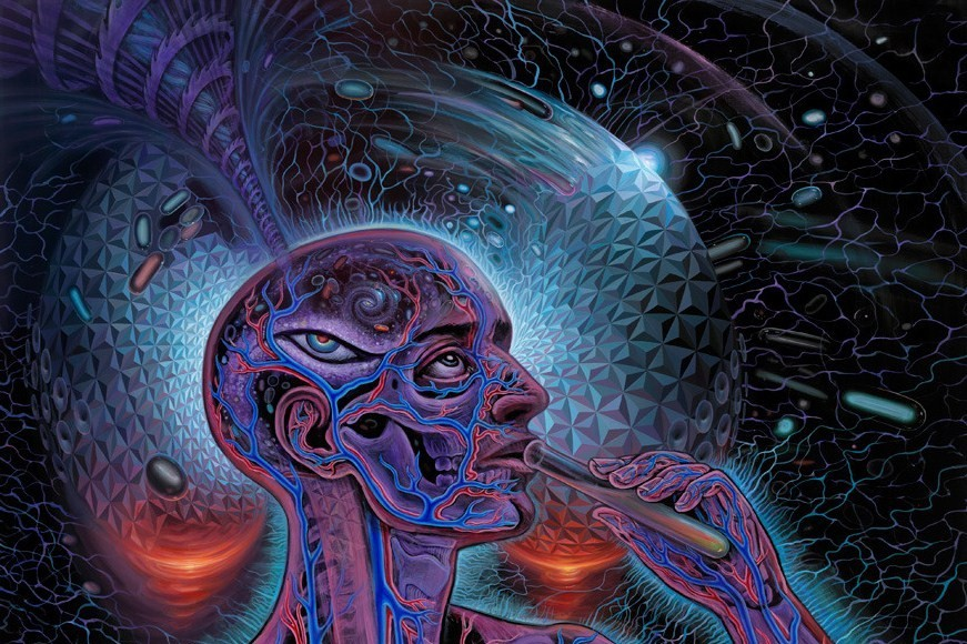 Lsd Trip Wallpaper Hd Psychedelic Spirit Paintings Alex Grey Art Gallery