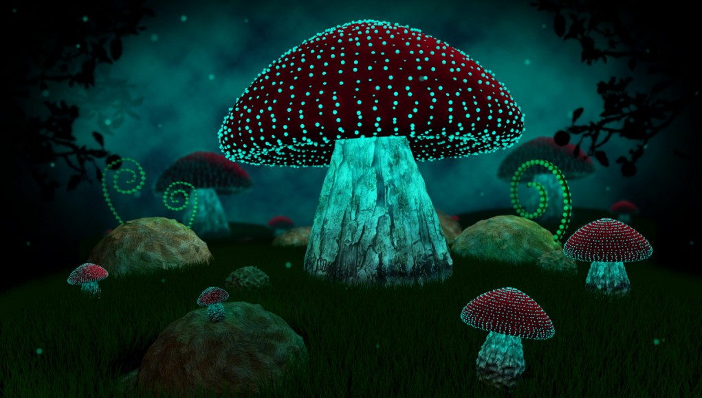 Terrence Mckenna Wallpaper Quotes Terence Mckenna Shrooms Are Organic Space Probes Sent To