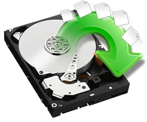 Basic Data Recovery Service