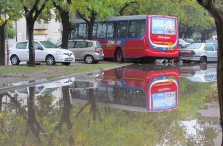 La Plata bus