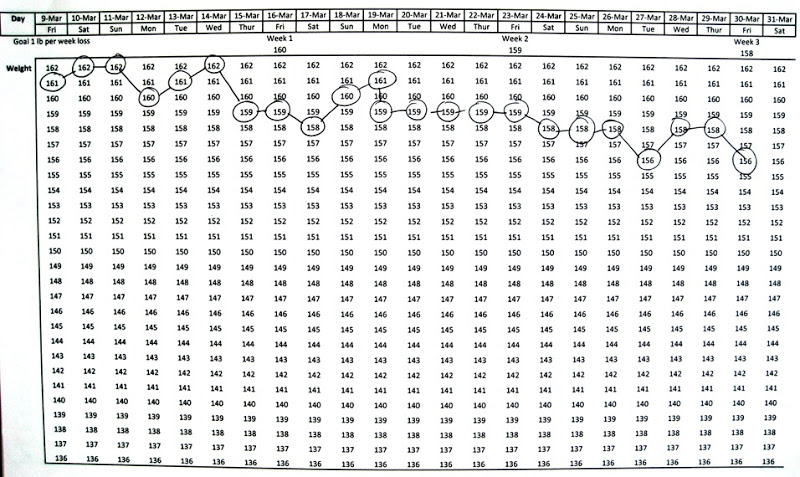 Wonderful Weight Loss Graph for your Filofax, computer or diet diary