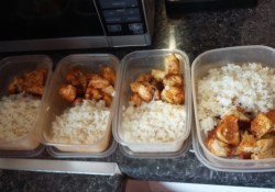 prepped chicken and rice