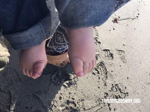 clarkys feet at the beach