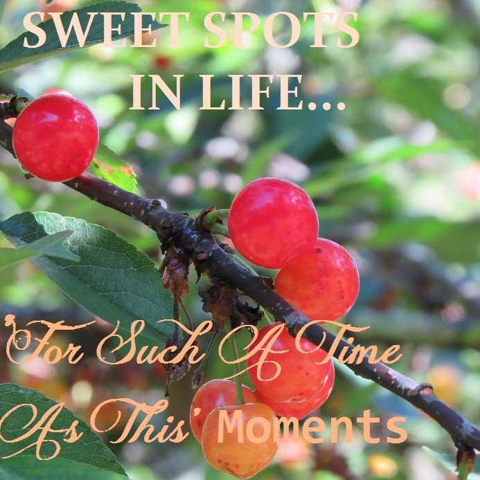 Sweet Spots in Life – 'For Such a Time As This' Moments