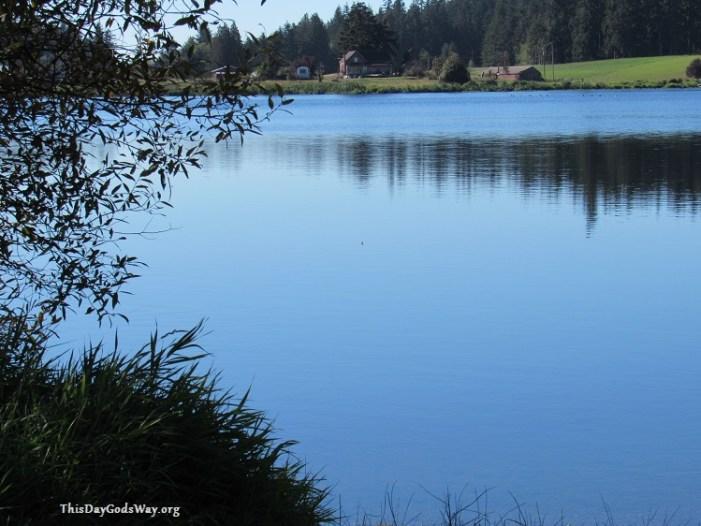 idyllic-countryside-in-water