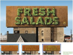 Splendent Subscribe Fresh Salad Make Medium Literally Mcdonald S Southwest Salad Grilled Ken Mcdonald S Southwest Salad Keto