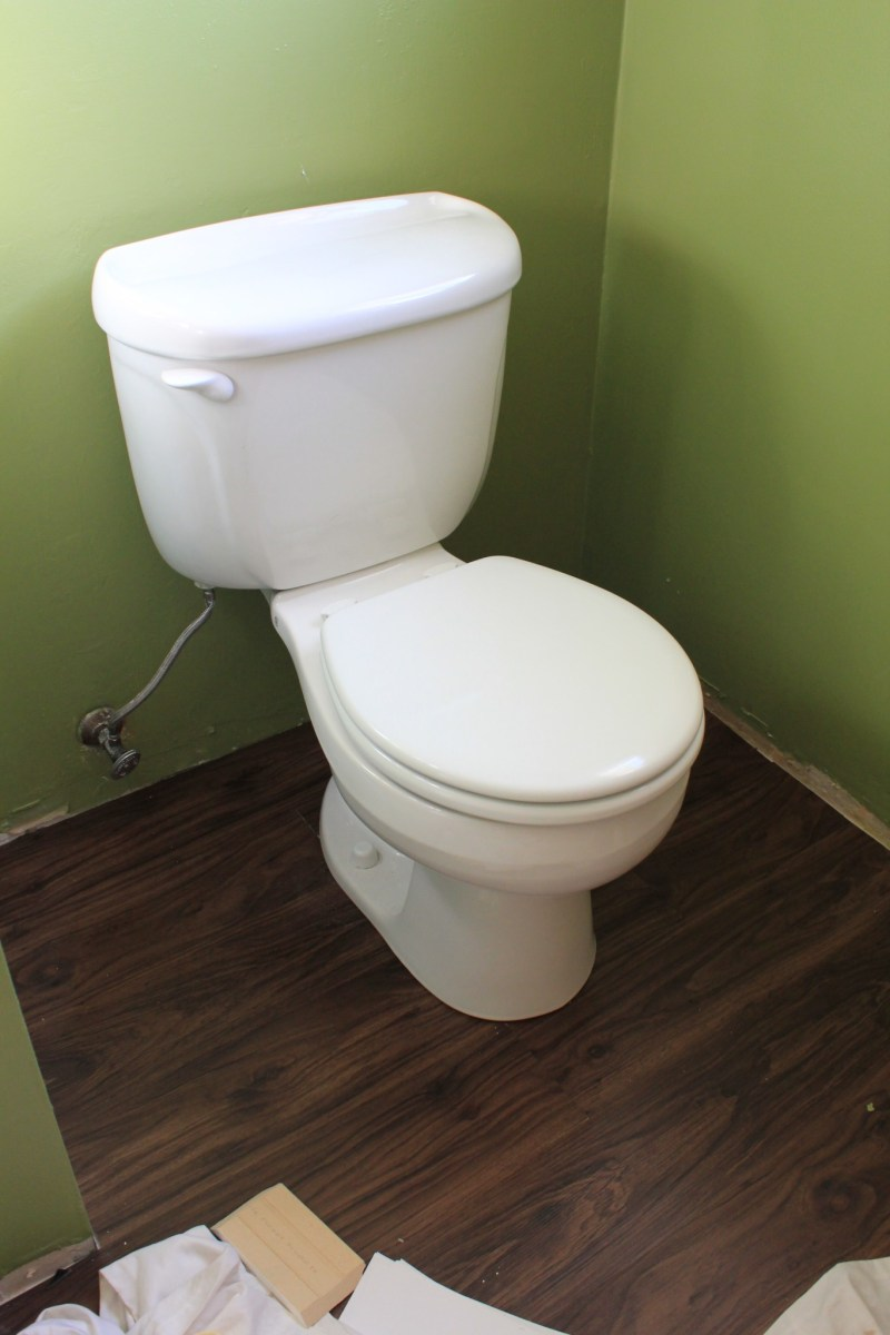 The Pink Palace: Toilet Talk