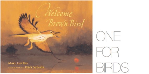 WELCOMEBROWNBIRD