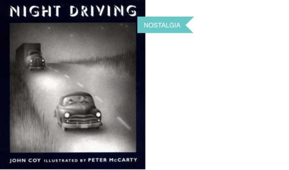 night-driving-book